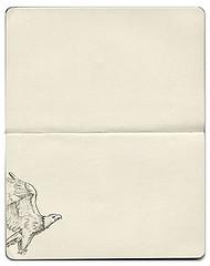 white-sheet.jpg