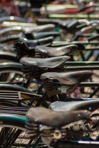 Bikes (Pedro Pacheco)